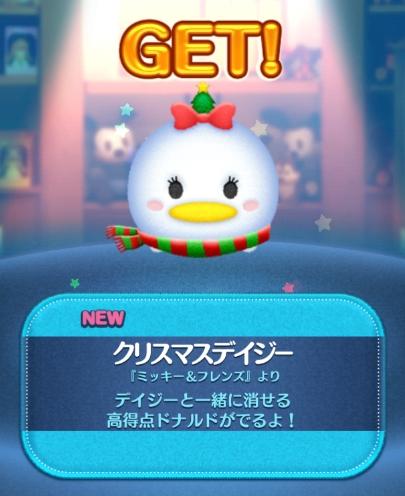 クリスマスデイジー (2)